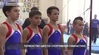 2018 03 29 Первенство ЦФО по спортивной гимнастике