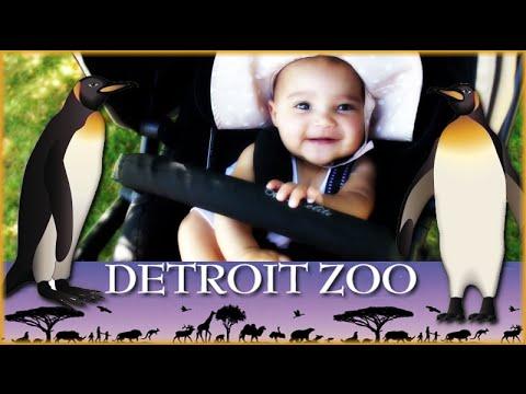 DETROIT ZOO FAMILY VLOG | Polk Penguin Conservation Center | AJ Daily
