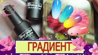 NAILS: Градиенты гель-лаками: Быстро-Легко-Красиво: Соколова Светлана