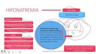 Equilibrio Ácido-Base/ Nefrología (Repaso rápido)