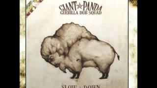 Giant Panda Guerilla Dub Squad - Burkina Faso