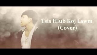 David Yang - Tsis Hlub Koj Lawm (Cover)