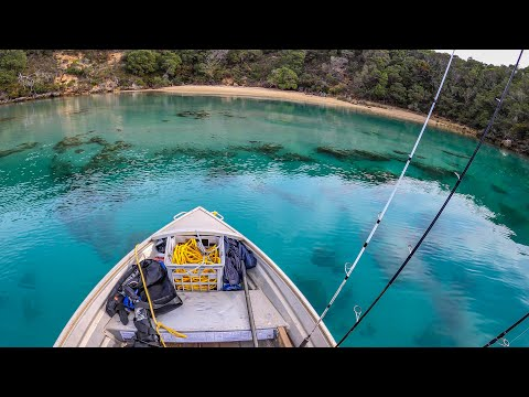 Amazing Clear Water! Remote Inlet Tinny Fishing Camping Adventures.