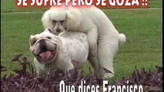Juventud Yacus - que se vaya - Otra vez me Equivoque (Video Oficial) Tania Producciones ✓