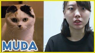 【10/20-10/25】新宿で無駄づくりの展示をしています | Vlog