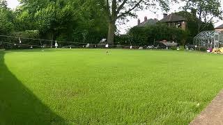 Time-Lapse of New Lawn Growing from Seed