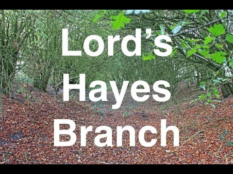 lord's-hayes-branch-canal,-bcn