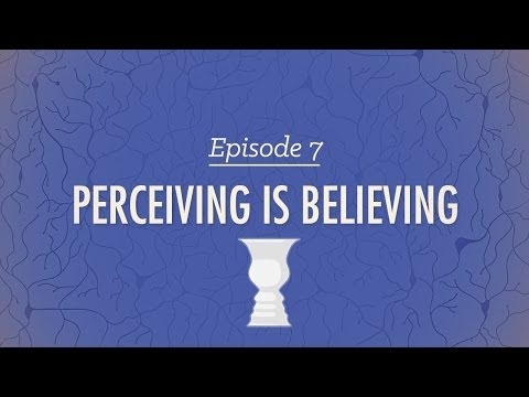 Perceiving is Believing: Crash Course Psychology #7