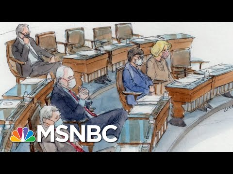 'Evidence Is Clear': Dems Say Trump 'Alone' Incited Capitol Mob   The Beat With Ari Melber   MSNBC