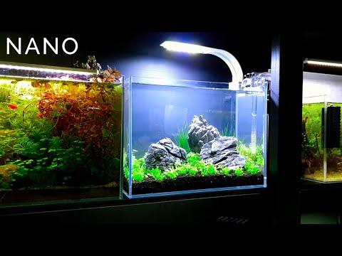 3 Gallon Nano Aquascape Setup