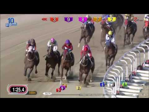 New Citadel - Seoul Racecourse, April 23 2017 (English)