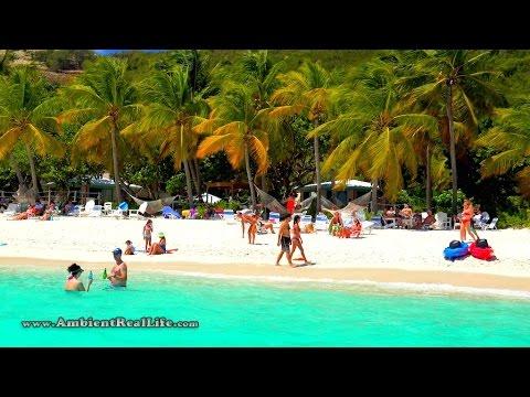 A Beautiful Day on White Bay!  in Jost Van Dyke, British Virgin Islands, CARIBBEAN