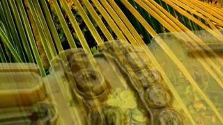 Deep Meditation Music - Zen Shakuhachi (Bass) Kyotaku