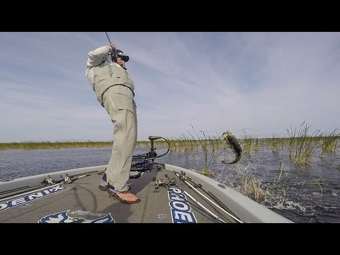 Taylor Ashley's Winning Day on Lake Okeechobee