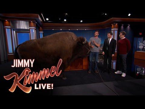 Wild Animals with Dave Salmoni & Andy Samberg