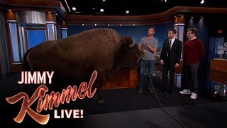 Download Wild Animals with Dave Salmoni & Andy Samberg Mp3 and Videos