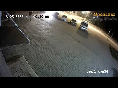 Медведь напал на человека в Ярославле Видео Новости // Bear Attacked A Man In Yaroslavl
