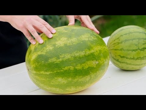 How To Buy a Watermelon - Farm Food - Women's Health