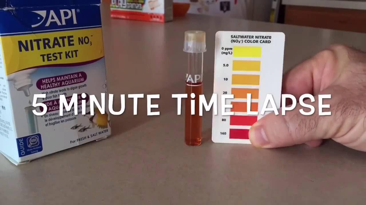 high nitrates in aquarium youtube