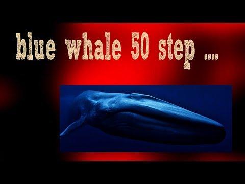 blue whale গেম এর ৫০ টি ধাপ  আসুন জেনে নেই কি করতে হয়  !!!!