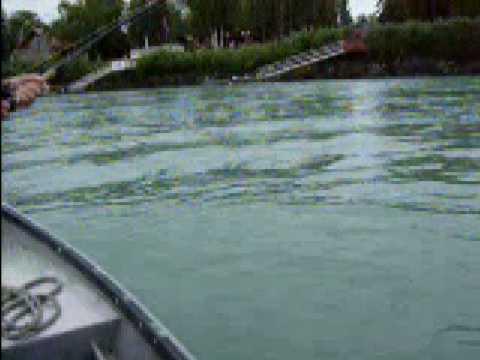 King salmon kenai river alaska youtube for Kenai river fish counts