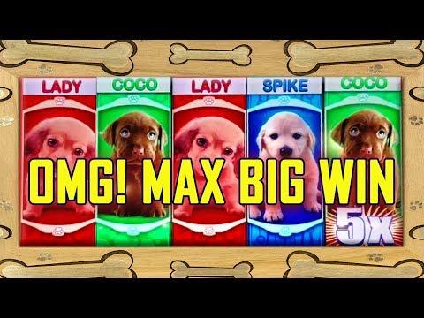 ?OMG! PUPPIES? ?BIG WIN? MAX BET! - GET THOSE PUPPIES!!!! - ALL BONUS FEATURES - 동영상