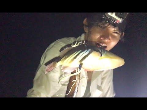 モリ突きをしたら熱帯魚が獲れた 無人島で遭難#3
