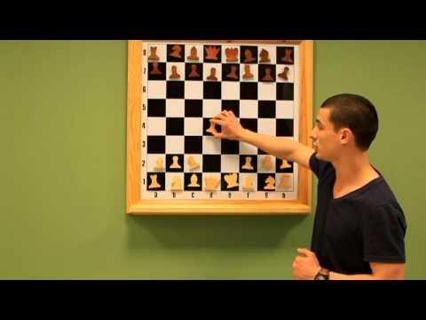 Шахматный учебник для начинающих Шахматная доска