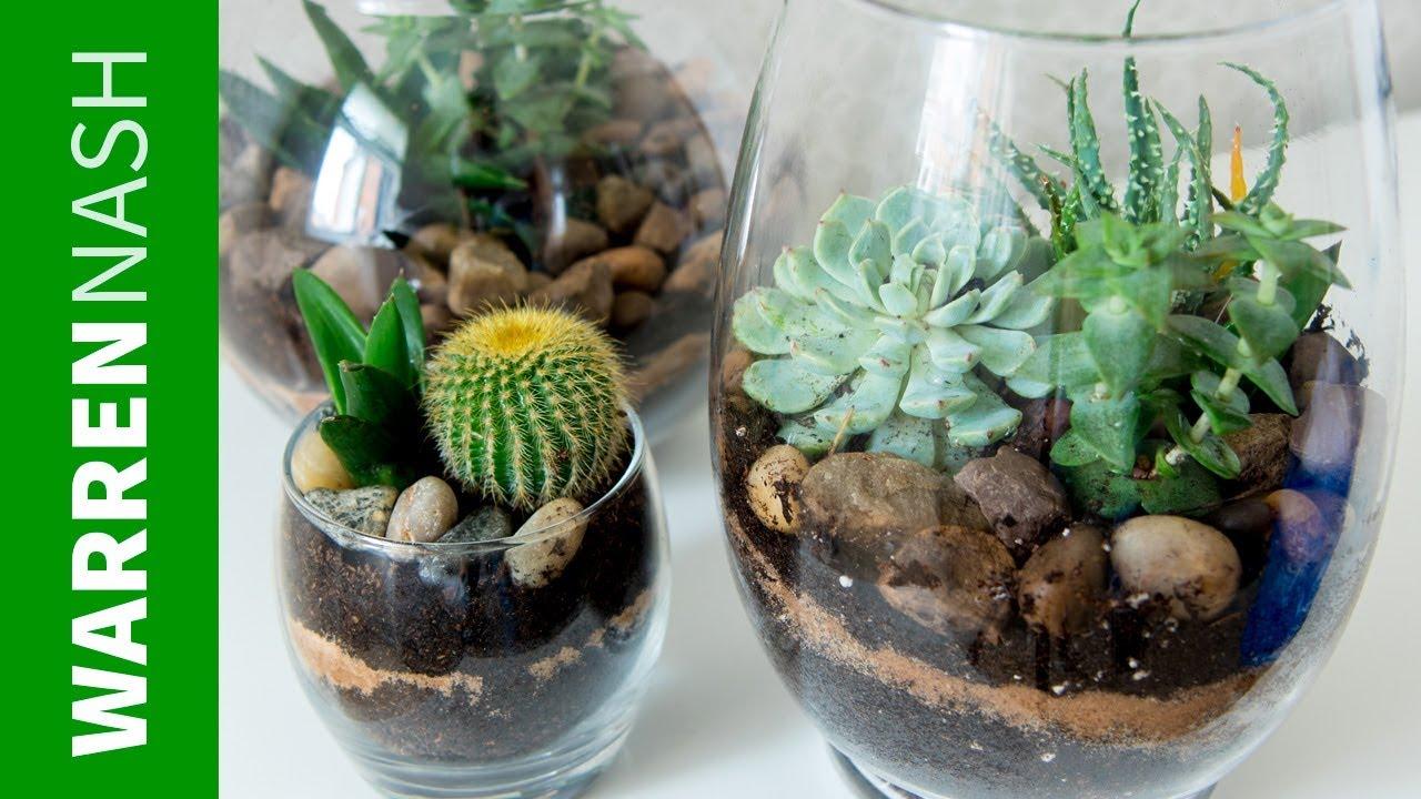 Succulent Planter Ideas Growing Your