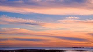 Sunset Vibes [Lofi Mix]