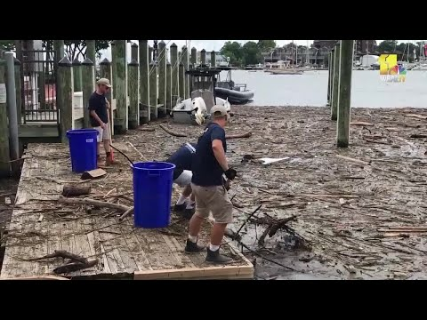 Crews use pitchforks to remove storm debris from Annapolis City Dock