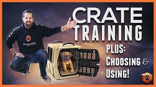 Crate Training Definitive Guide  Why and How to do it