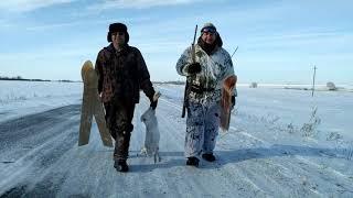 Охота на зайца 31 января 2021г