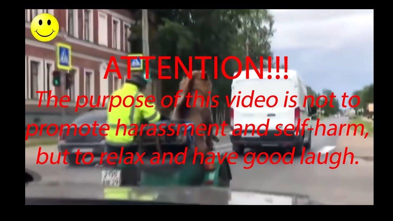 Smeh do Suza - Smesni Video Snimci - Smesno do Bola 😂😂 R1