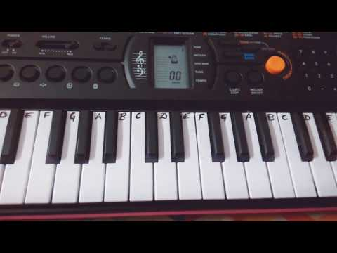 Shape of You~ Ed Sheeran~Keyboard Piano-Casio Cover~Easy Notes/Tutorial(How to Play)