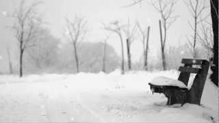 벗님들(이치현) - 사랑의 슬픔 (1986年)