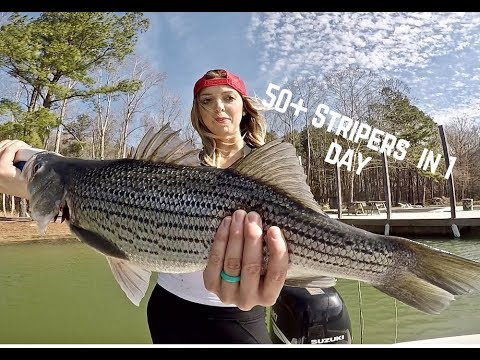 STRIPER FISHING North Carolina In Winter With NONSTOP CATCHES