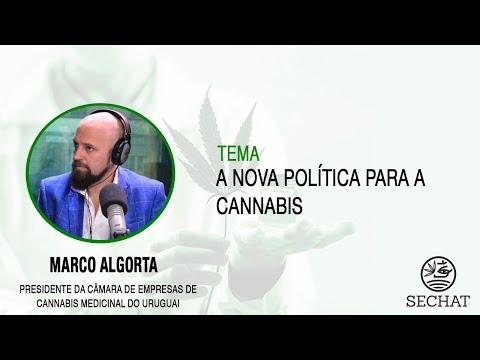 """A Nova política para a Cannabis"" | Com Marco Algorta"