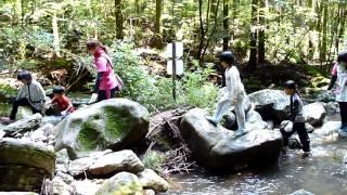 2015 08 27少年自然の家沢登り01加津佐町学童保育わかキッズ2
