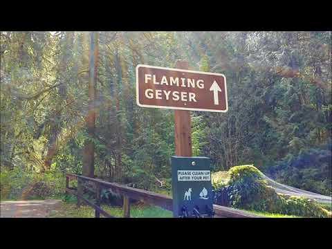 Flaming Geyser State Park,  Washington, US