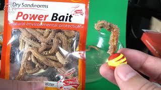 ⭐ Сушеный Нереис для ловли Пеленгаса 🔥 морской лиманский червь
