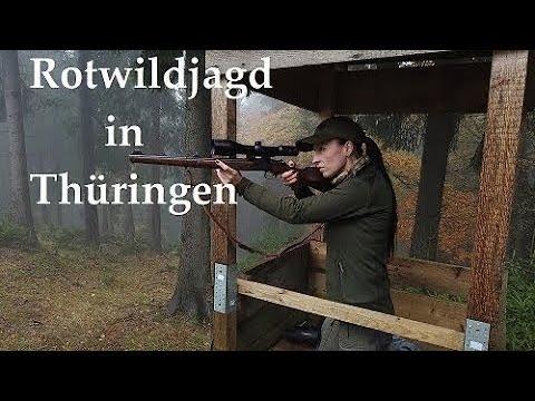 Jagd auf Rotwild in Thüringen