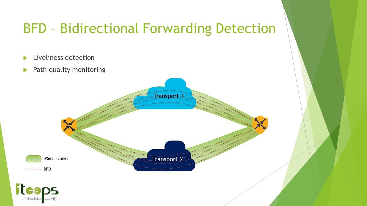 Cisco Sd Wan Bfd Bidirectional Forwarding Detection Spanish Youtube