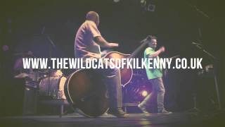 The Wildcats Of Kilkenny - Live...In Our Dirty Old Town - Teaser 2