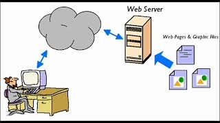 What is Server & Their types ?