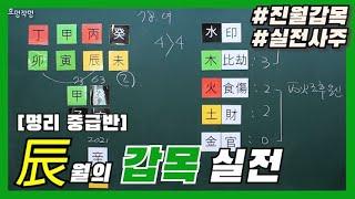 [중급] 8강 - 辰月의 甲木 (진월의 갑목) 실전사주