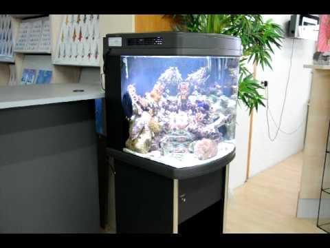 meerwasser aquarium hs 60 mit hqi led und komplettem. Black Bedroom Furniture Sets. Home Design Ideas