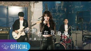 王欣晨 Amanda【 謝謝你在我身旁 】Official Music Video(三立華劇「我的青春沒在怕」插曲)