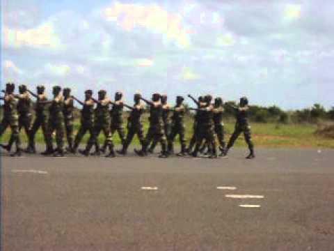 Cérémonie de Dissolution  du 2e bataillon Sénégalais : Posté par le journaliste Frédéric Diallo