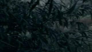 Marko Kraljevic/Panonski samuraj - 2  pocetak,